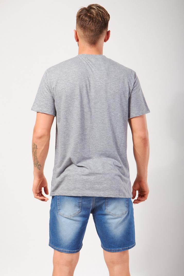 Remera Logo estampada Classic fit